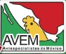 XIII Congreso Internacional AVEM 2020