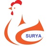 Surya Incubators