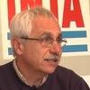 Daniel Presello