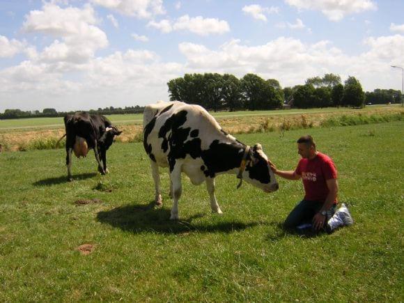 On Farm - Dr.