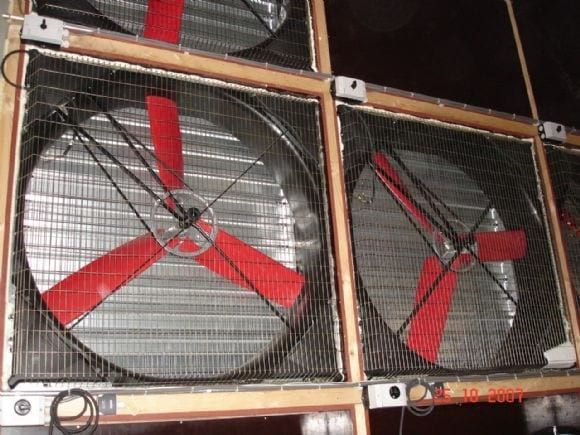 Fans with large capacity - Poultry equipment