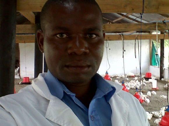 Mhondoro Poultry Farm - Saina
