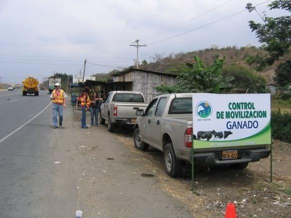Servicio ecuatoriano sanidad animal - Bovinos