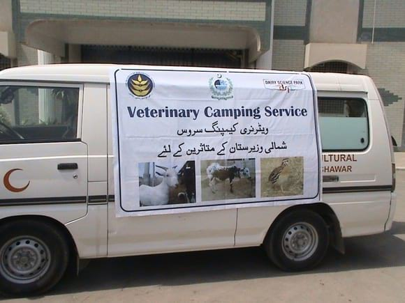 Relief Camp at Bannu for Internally Displaced Persons from North Waziristan. - Veterinary Camping Service at Bannu for Internally Displaced Persons of North Waziristan