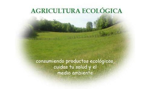 agricultura sustentable - agricultura sustentable