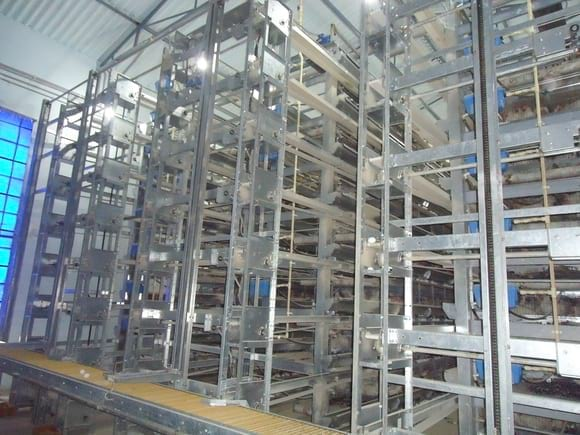 Battery Cages 8Tiers 3 Rows first time in india - EC Layer project India