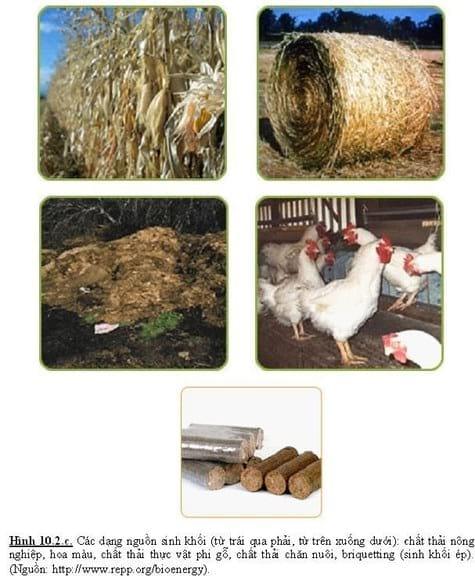 biomasst - Various