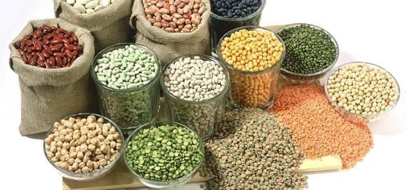Bean processing equipment - Various