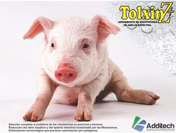 Tolxin Z+ - Varias