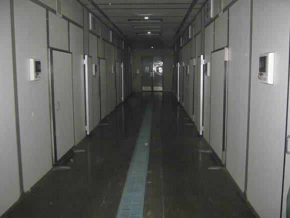 Setter room view of a commercial hatchery - HATCHERY