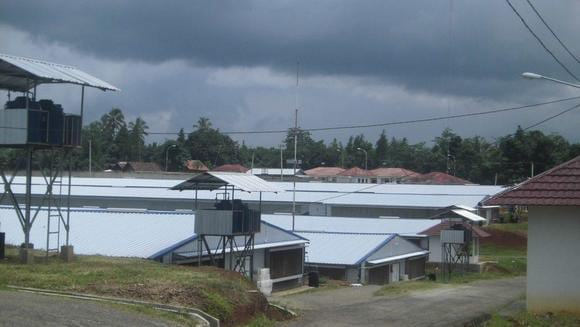 Sukamulya 1 Farm Broiler breeders - Sukamulya 1 Farm