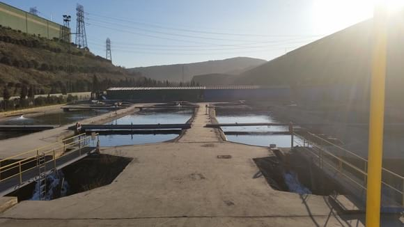 my seabass and seabream pond my farm capacity 25000 kg - Various