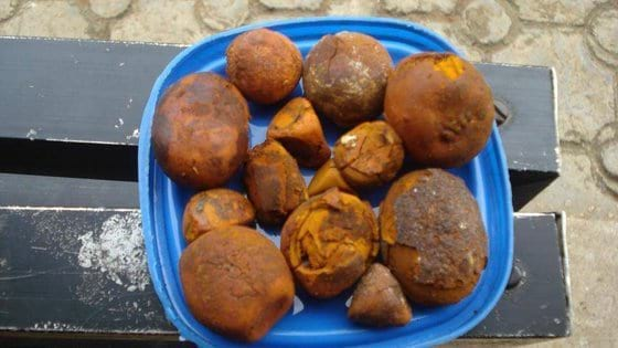 Cow /Ox Gallstones for sale - Various