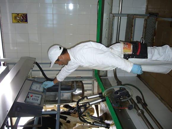 Asesoría en Control de Mastitis y Calidad de Leche - Servicios Técnicos Andrés F. Ruiz J. - GENBIOGAN.