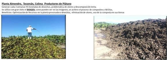 Generacion de Composta a base de residuos de Palatano - GALERIA DE  EXITOS