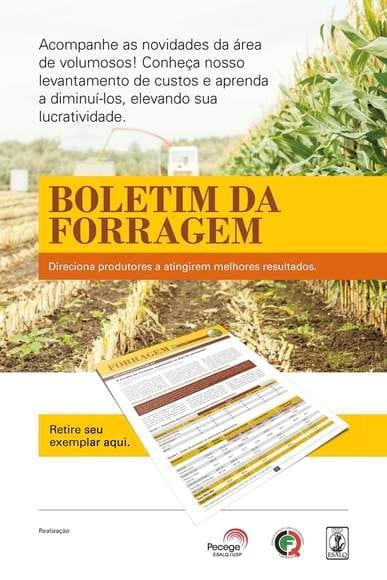 Boletim da Forragem - Mais informações forragem@pecege.esalq.usp.br - Vários