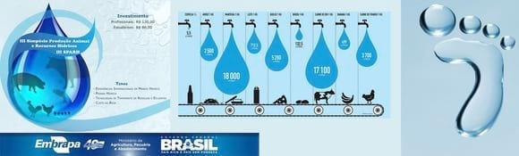 IV Simpósio de Produção Animal e Recursos Hídricos - Varias