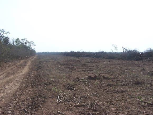 Acordonado en desmonte de parque chaqueño-argentina - Varias