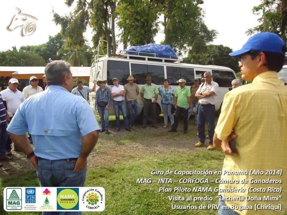 PRV en Lechería Doña Mimi (Panamá) - 2 - MAG/INTA/CORFOGA Costa Rica - De gira con CEG en Panamá (1).