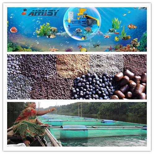 Fish Feed Pellets produced by Amisy Fish Feed Extruder - My activity