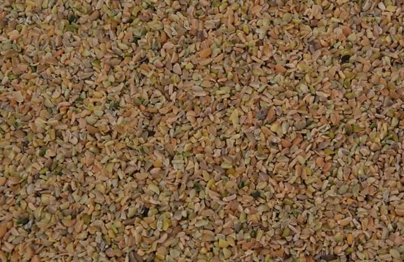 Guar meal korma (Protein 50% min.) - Poultry feed