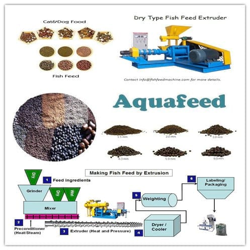 Fish feed extrusion process - Clinical issues