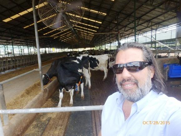 Farolur - El Talar de Lopez Mena - Maldonado Uruguay - Mi actividad