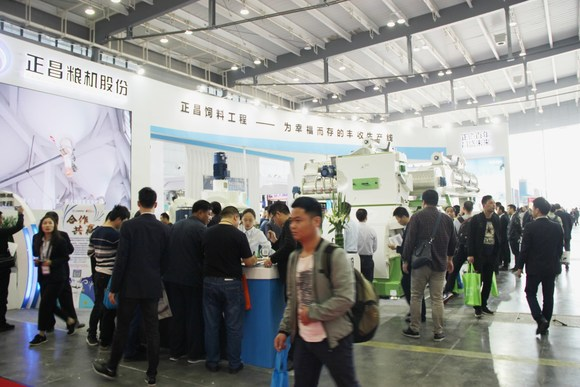 ZHENG CHANG piglet feed maturing technology production line - Clinical issues