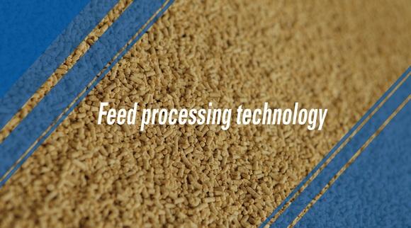 The effect of feed processing technology on the safety of feed - Clinical issues
