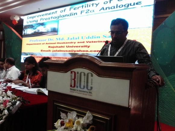 Dhaka conference - My activity