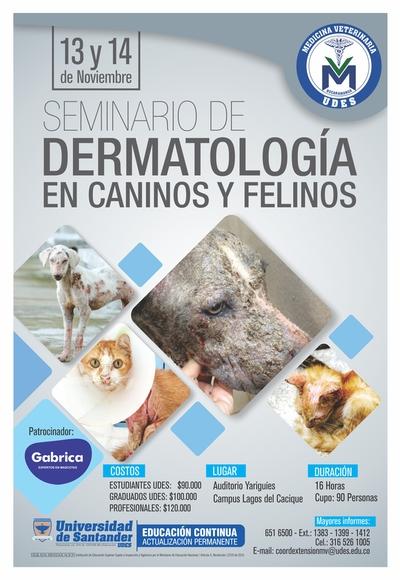Seminario de Dermatología en Caninos y Felinos - Eventos