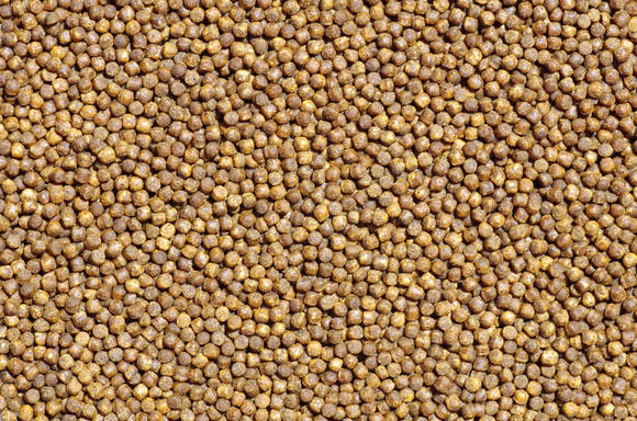 How to control the moisture content of feed products in winter - Clinical issues