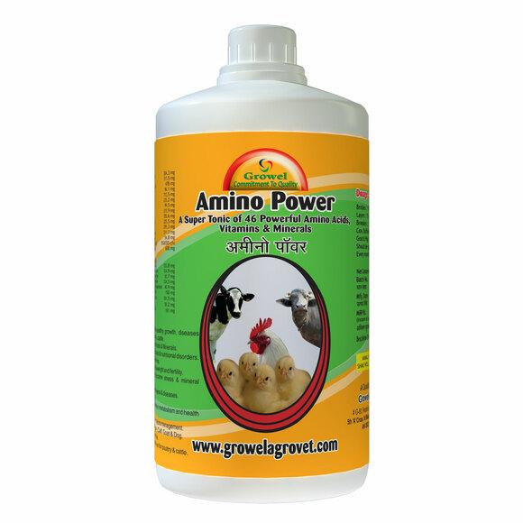 Amino Power - My activity