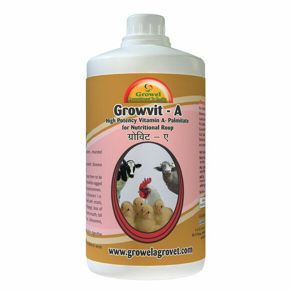 A Powerful Vitamin- A Palmitate Nutritional Roup for Poultry & Cattle . - Clinical issues