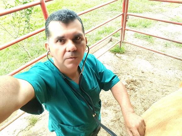 Auscultando vaca - Casos clínicos