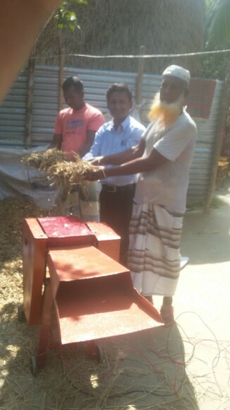 Vaue addition to rice straw for dairy production in Bangladesh - Clinical issues