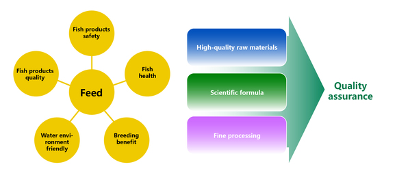 Make good aquatic extruded feed to seize the market opportunity - Clinical issues