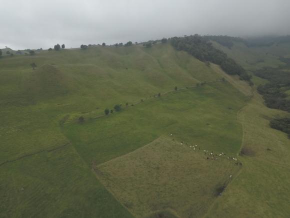 PRV a 3000 msnm ganadería doble propósito - fotos ganaderias