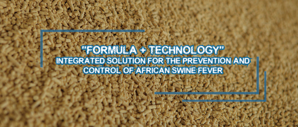 Integrated Solution for the Prevention and Control of African Swine Fever - Clinical issues