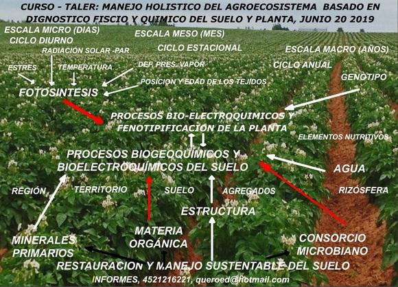 CURSO TALLER MANEJO HOLISTICO DEL AGROECOSISTEMA BASADO EN EL DIAGNOSTICO DEL PATRIMONIO SUELO - Mi actividad