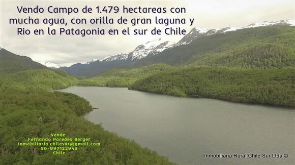 Vendo campo de 1.479 hectáreas a orilla de Lago sur de Chile - Mi actividad