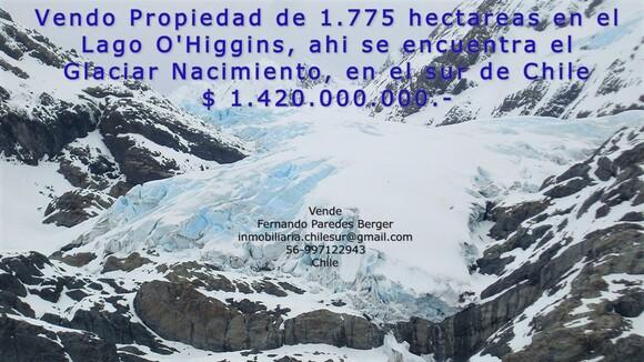Vendo 1.775 hectáreas en el Lago O'higgins en el sur de Chile - Mi actividad