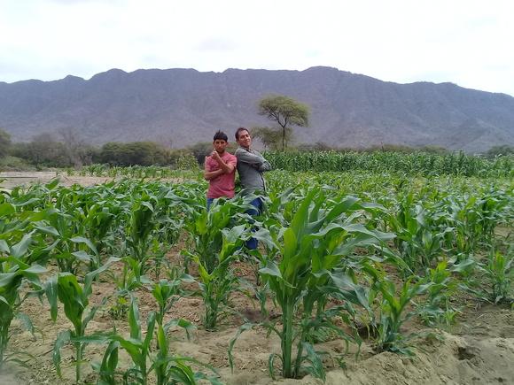 www.agriperia.com - OLMOS - PERU