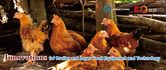 Innovations for Broiler and Layer Feed Equipment and Technology - Clinical issues