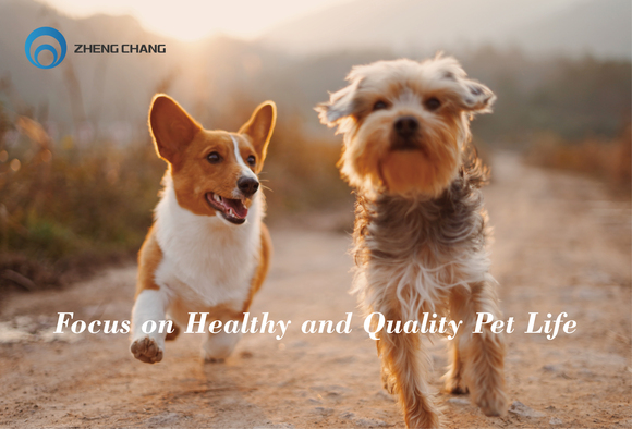 ZHENG CHANG Pet Food Production Solution - Clinical issues
