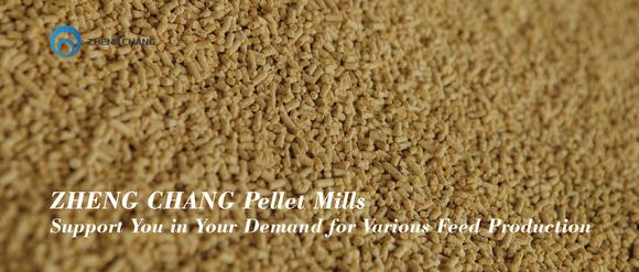 ZHENG CHANG Pellet Mill - Clinical issues