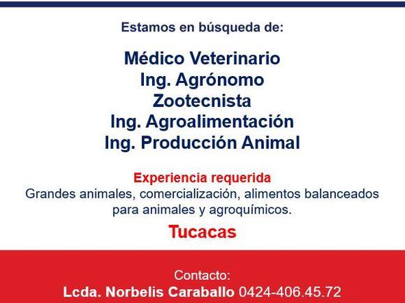 Representante de Ventas en Tucacas - Varias