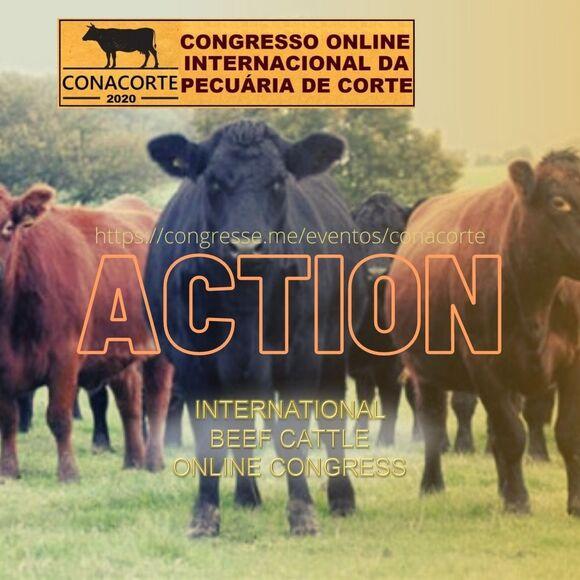 International Online Congress on Beef Cattle - Events