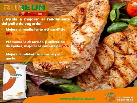 Runeon on beef - Casos clínicos