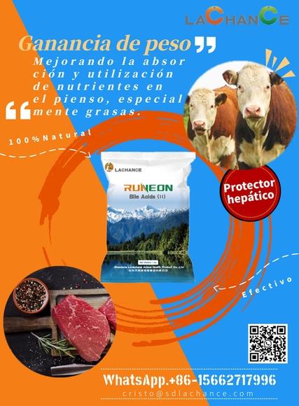 Innovador producto para mejorar el crecimiento y la calidad de carne de ganado bovino - Eventos